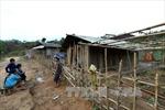 Điện Biên: Cần sớm ổn định sản xuất cho người dân theo Đề án 79