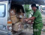 Nam Định bắt xe chở gỗ quý không rõ nguồn gốc