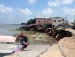 An Giang: Sạt lở nghiêm trọng, 14 căn nhà đổ sập xuống sông Hậu