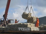 Yêu cầu xử lý vụ Trưởng Ban Quản lý khu Kinh tế tỉnh Kon Tum xây công trình trái phép trên đất nông nghiệp