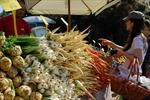 Tránh lãng phí thực phẩm qua ứng dụng di động