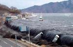 Bộ trưởng Nhật Bản từ chức vị 'vạ mồm' về thảm họa sóng thần