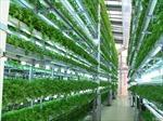 Nhật Bản khảo sát đầu tư nông nghiệp tại Hà Nam