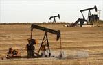 Giá dầu thế giới liệu có đi lên sau một quý đi xuống?