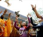 Đại lễ Phật đản phát huy truyền thống yêu nước, tinh thần 'hộ quốc an dân'
