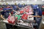 Bàn giải pháp phát triển bền vững ngành hàng cá tra