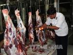 Ninh Thuận kiên quyết xử lý các lò giết mổ tự phát