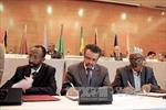 Cựu Bộ trưởng Y tế Ethiopia được bầu làm Tổng Giám đốc mới của WHO