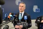 Khai mạc Hội nghị thượng đỉnh không chính thức của NATO