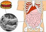 Bộ Y tế khuyến cáo phòng chống bệnh lỵ trực khuẩn
