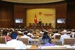 Thông cáo số 6 kỳ họp thứ 3, Quốc hội khóa XIV