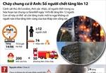 Toàn cảnh vụ cháy chung cư 27 tầng ở Anh