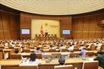Quốc hội sẽ xem xét, thông qua nhiều dự án luật