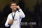 UEFA lập thêm nhiều giải thưởng tôn vinh cá nhân