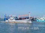 Quảng Nam: Thành lập đội cứu nạn cứu hộ và bảo vệ môi trường biển