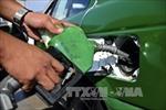 Giá dầu thế giới xuống mức thấp nhất 10 tháng