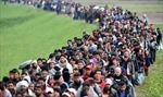 Năng lực lãnh đạo yếu kém và tình trạng phe phái là nguyên nhân khủng hoảng di cư