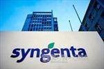 Nông dân Mỹ thắng kiện tập đoàn Syngenta gần 218 triệu USD