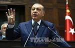 Tổng thống Thổ Nhĩ Kỳ: Bản yêu sách của các nước Arab trái luật pháp quốc tế