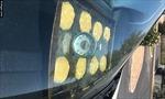 Phoenix nóng chảy nhựa, người dân đem bột ra đường nướng bánh