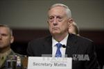 Mỹ khẳng định tiếp tục vũ trang cho người Kurd ở Syria