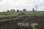 Đắk Nông: Thu hồi gần 2.000 ha đất rừng bị lấn chiếm
