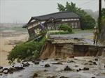 Nhật Bản: Mưa lũ khiến 15 người thiệt mạng