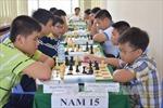 300 kỳ thủ tham dự giải vô địch cờ tướng trẻ toàn quốc năm 2017
