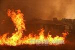 Cháy rừng dữ dội tại Mỹ và Canada