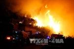 Cháy rừng ngùn ngụt ở Pháp, 10.000 người sơ tán trong đêm