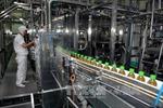 Công nghiệp chế biến, chế tạo đứng đầu trong thu hút vốn đầu tư nước ngoài