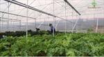 Aribank -Tài chính cho phát triển nông nghiệp, nông thôn