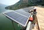 Phát triển điện mặt trời: Cần cơ chế ổn định về giá