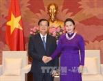 Củng cố mối quan hệ truyền thống lâu đời của hai nước Việt Nam - Lào