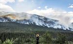Cháy rừng lớn chưa từng thấy tại tỉnh British Columbia của Canada