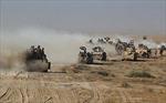 Các lực lượng Iarq tiếp tục giành thắng lợi trong chiến dịch giải phóng Tal Afar