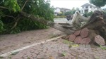 Giông lốc đột ngột làm hư hỏng trên 700 ngôi nhà tại Lào Cai