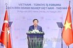 Tăng cường hợp tác kinh tế Việt Nam - Thổ Nhĩ Kỳ