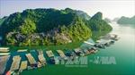 Các giải pháp bảo tồn đa dạng sinh học Vịnh Hạ Long - Quần đảo Cát Bà