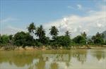 Ninh Thuận: Ba người mất tích khi đi xe bò qua sông Cái