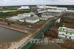 Mùi hôi tại kho chứa bùn ép của Nhà máy Giấy Lee&Man đã giảm
