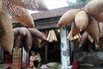 Đánh thức tiềm năng du lịch làng nghề Hưng Yên