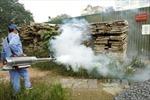 Số ca mắc sốt xuất huyết ở Hà Nội liên tục giảm