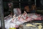 Đồng Nai phát hiện cơ sở giết mổ lợn có dấu hiệu bị lở mồm long móng