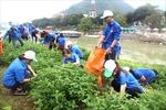 Mít tinh hưởng ứng chiến dịch 'Làm cho thế giới sạch hơn' năm 2017