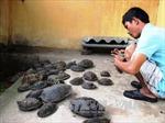 Cộng đồng báo chí Việt chung tay bảo vệ thiên nhiên hoang dã