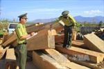 Kon Tum phát hiện 2 điểm tập kết gỗ lậu tại xã Đăk Trăm