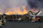 Cháy rừng tái diễn ở miền nam Chilê