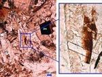 Phát hiện nhiều khoáng chất Mặt Trăng tại Ôxtrâylia