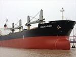 """Chuyên gia hàng hải """"giải mã"""" vụ chìm tàu Vinalines Queen"""